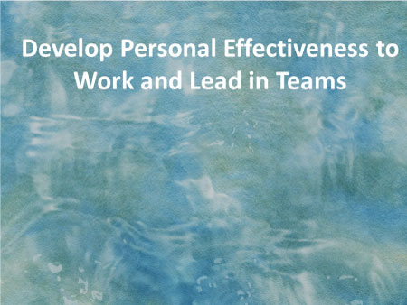 Develop Personal Effectiveness to Work and Lead in Teams​